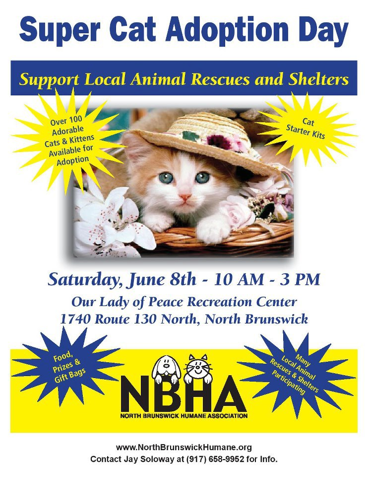 North Brunswick Super Cat Adoption Day