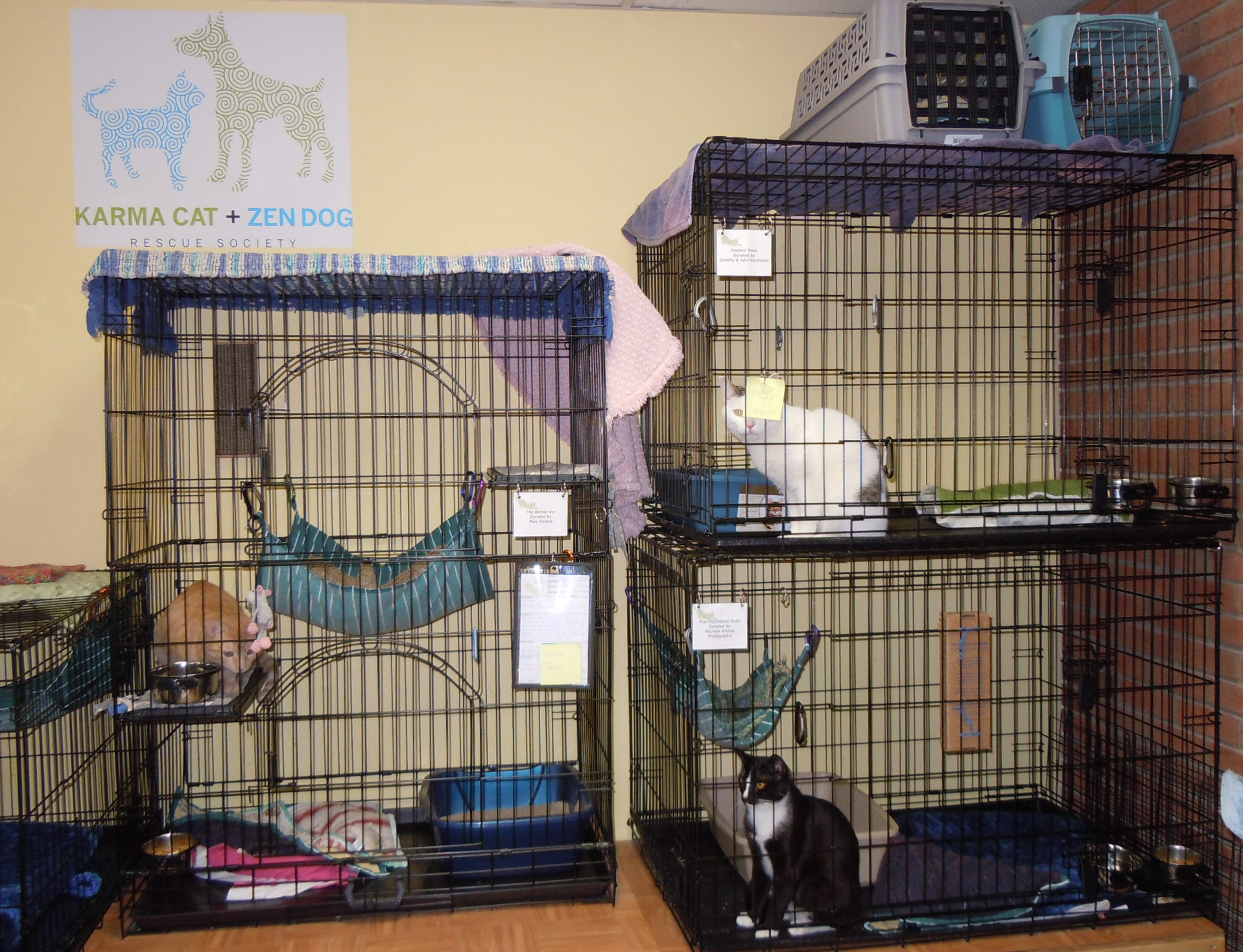 Edgebrook Adoption Center
