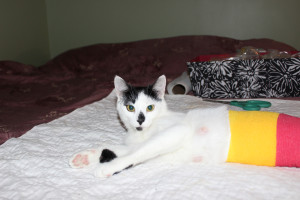 Courtney: wrapped up after treatment
