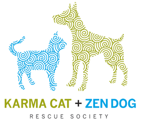 Karma Cat & Zen Dog Rescue Society - Arts In The Park @ Highland Park | New Jersey | United States