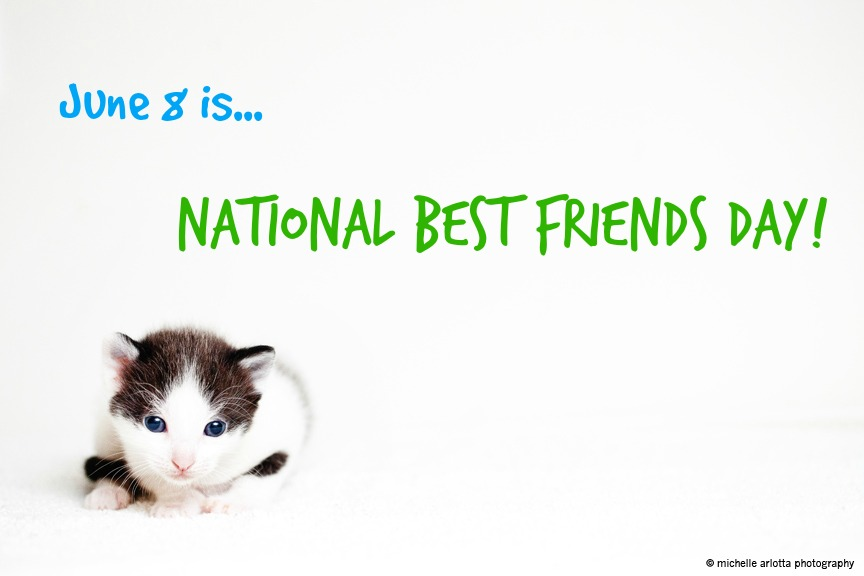 10 Reasons Why Pets Make Purrfect Best Friends